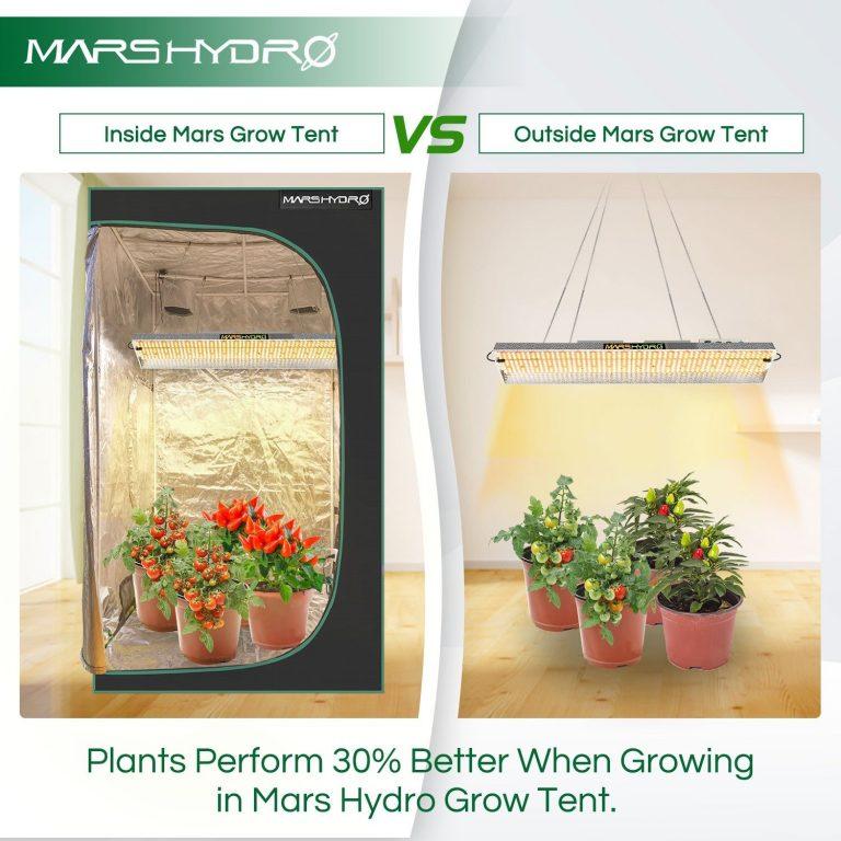 اتاق رشد گیاه مارس هایدرو
